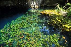 1024px-Grand_Cenote_20101006-600x398
