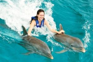 Nado-con-Delfines-en-las-playas-de-Quintana-Roo