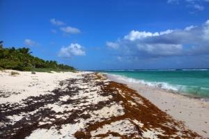 playa-chemuyil