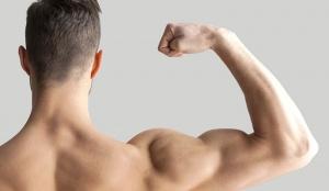 article-Biceps-el-mejor-curl-5481a99aa403f